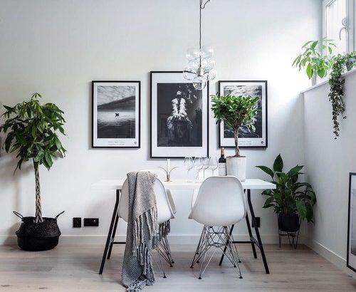 インテリアを劇的おしゃれにする観葉植物の飾り方&34実例