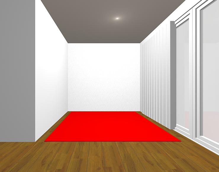 中間の茶色の床と赤のラグ