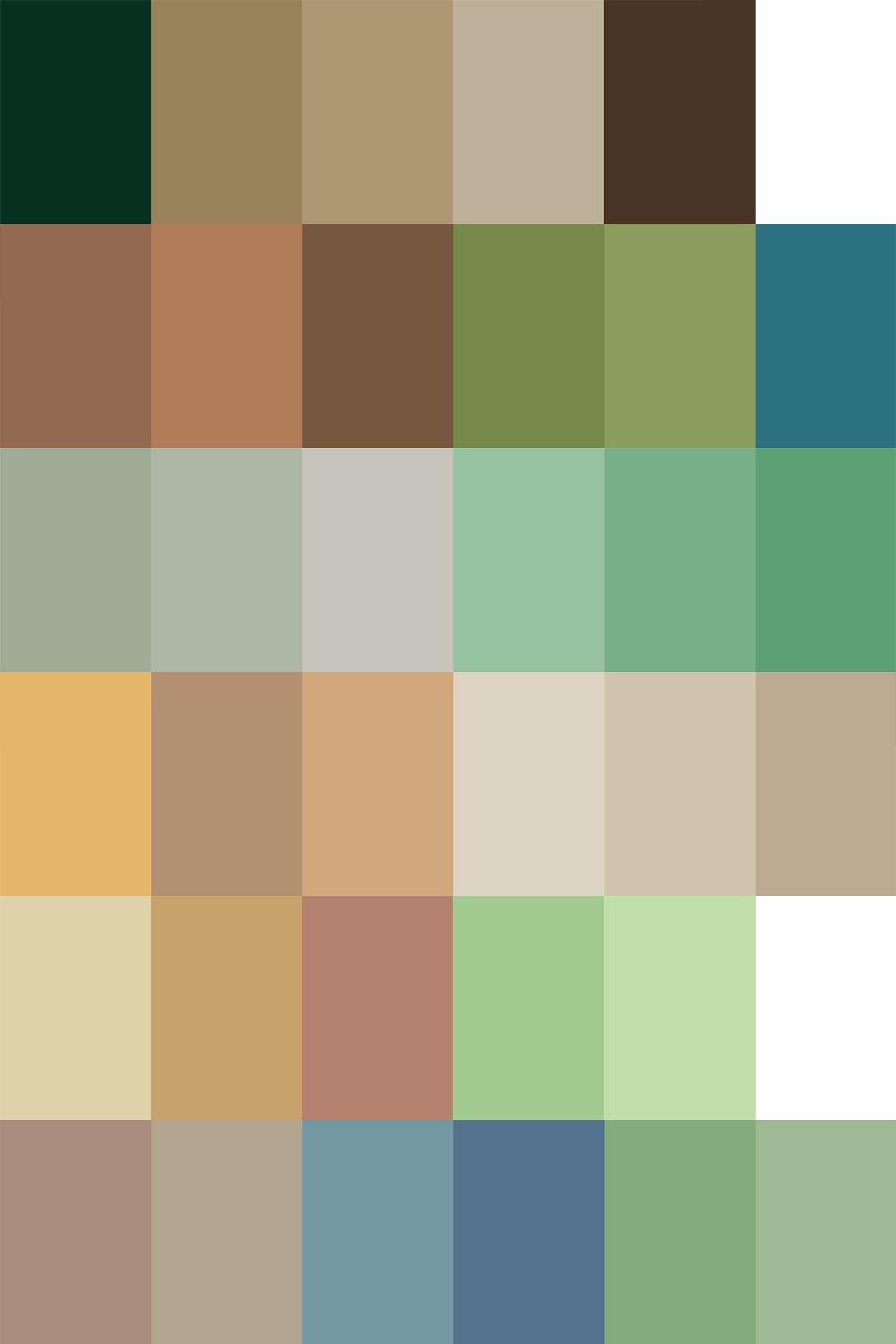 自然界にある色のカラーサンプル